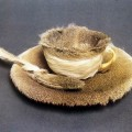 meret-oppenheim-fur-lined-tea-cup