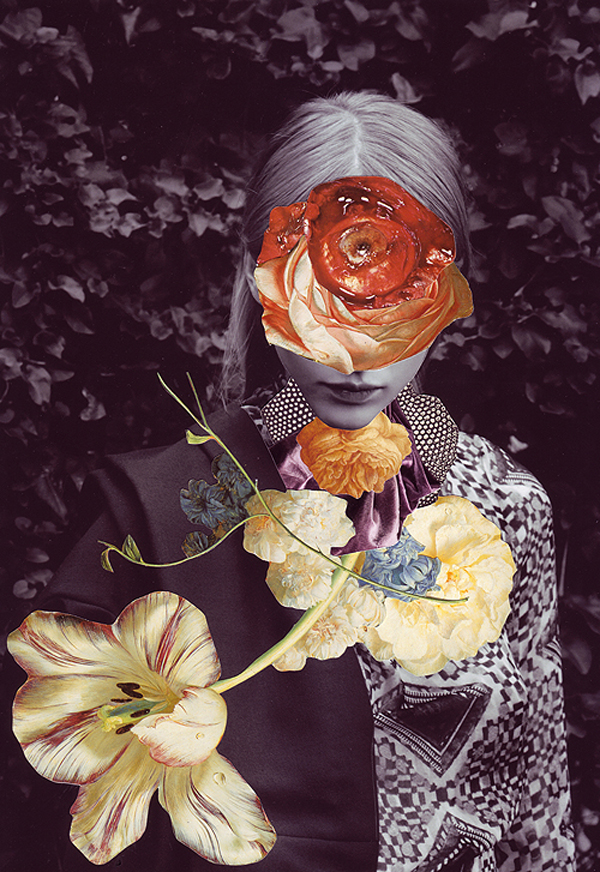 vanitas-collages-ashkan-honarvar-8