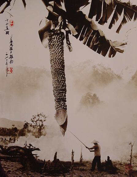 Дон Хонг-Оай