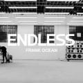 """""""endless"""""""