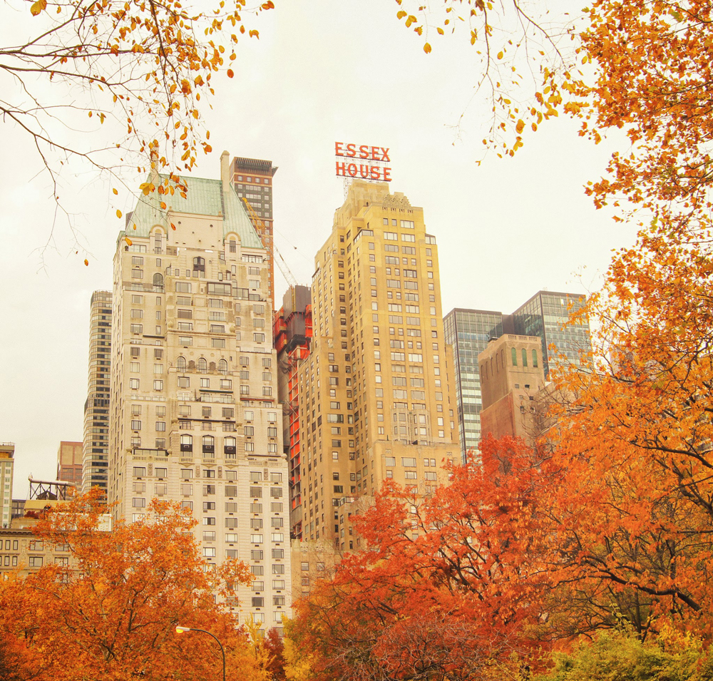 new-york-autumn-central-park-leaves-essex-house