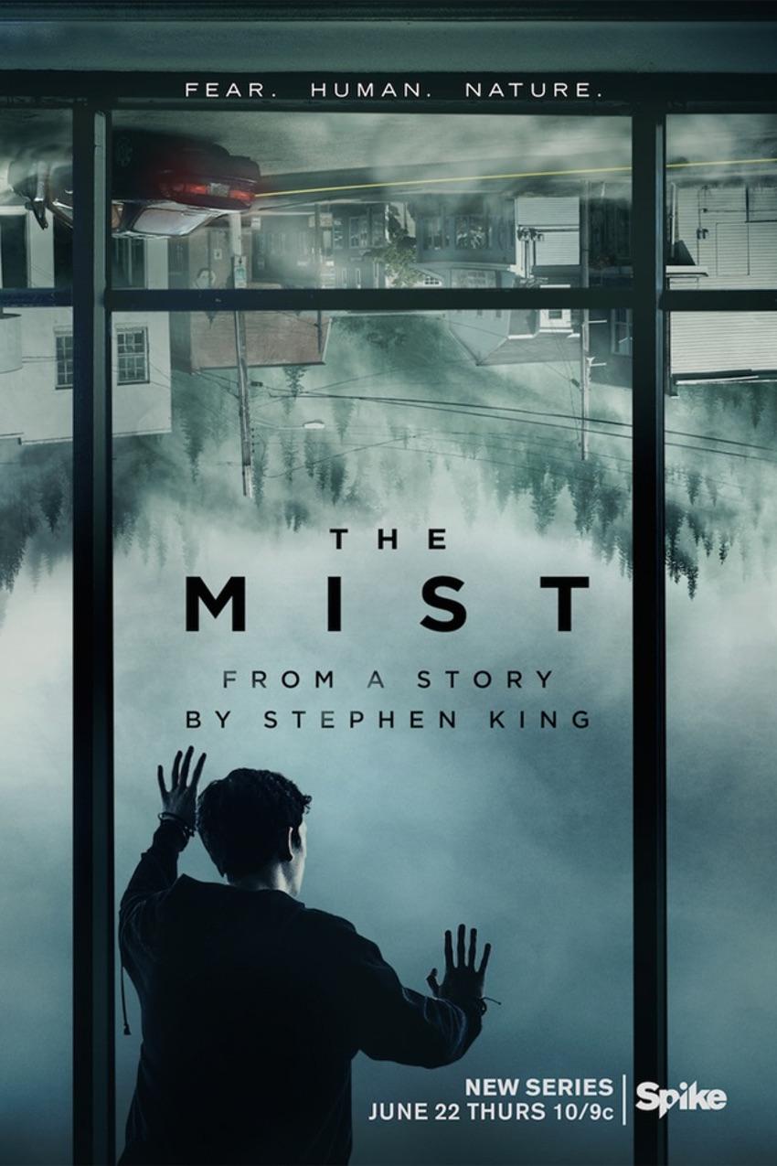 mist_1_1002x1503