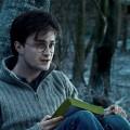Второй Гарри Поттер