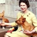Елизавета II и корги