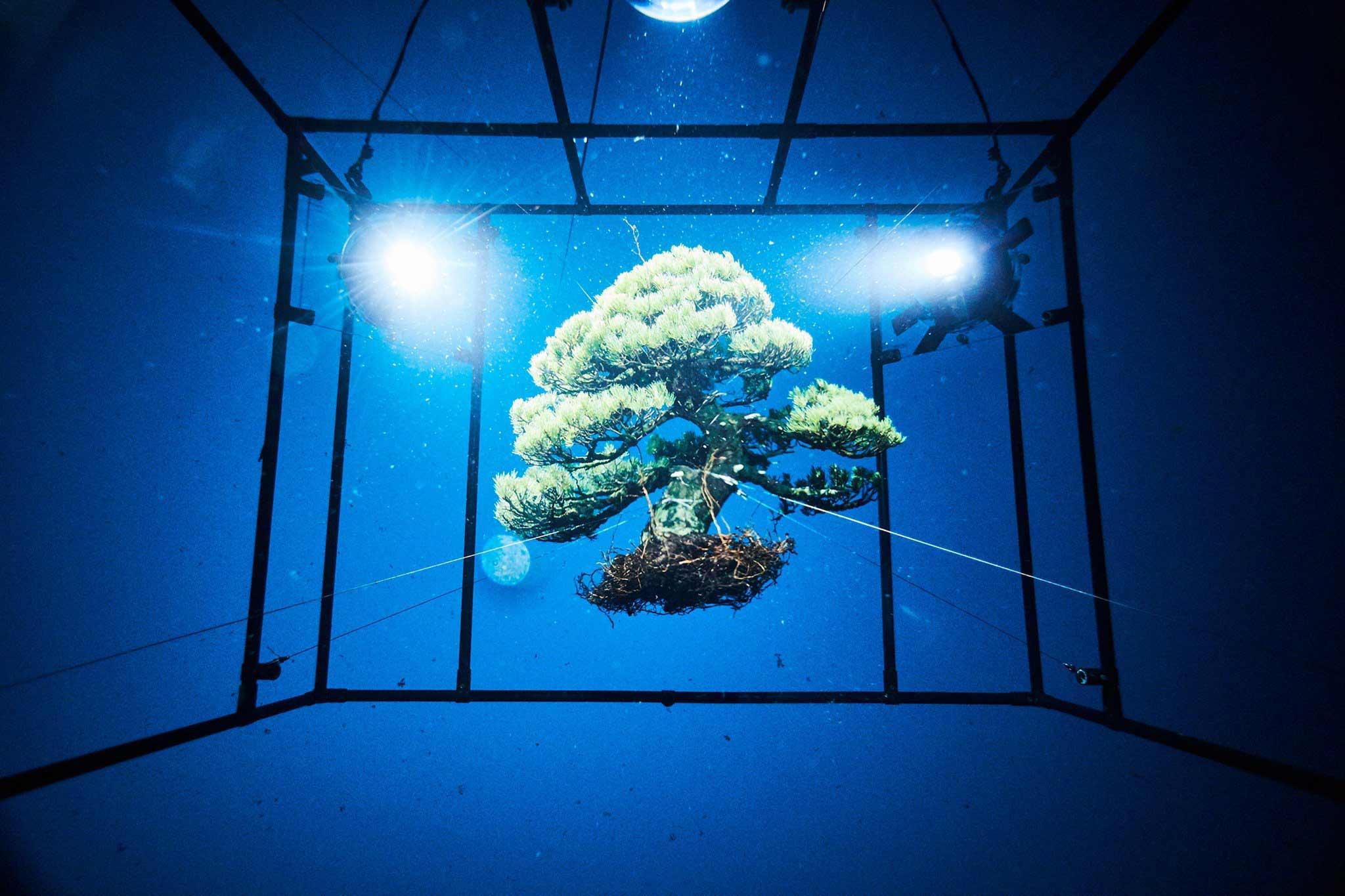 azuma-makoto-dives-into-the-unknown-2