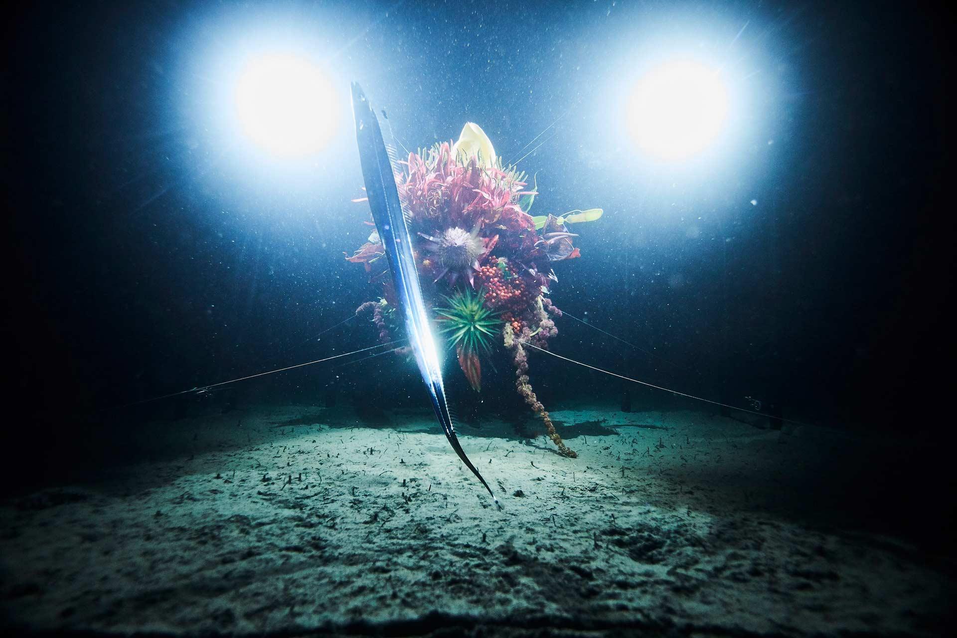 azuma-makoto-dives-into-the-unknown-3