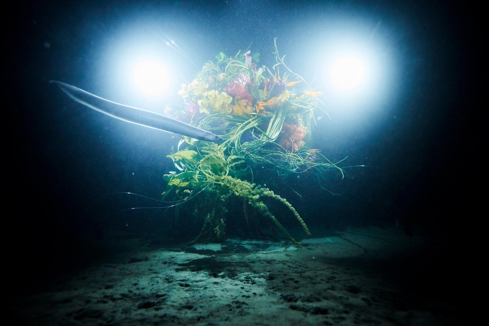 azuma-makoto-dives-into-the-unknown-6