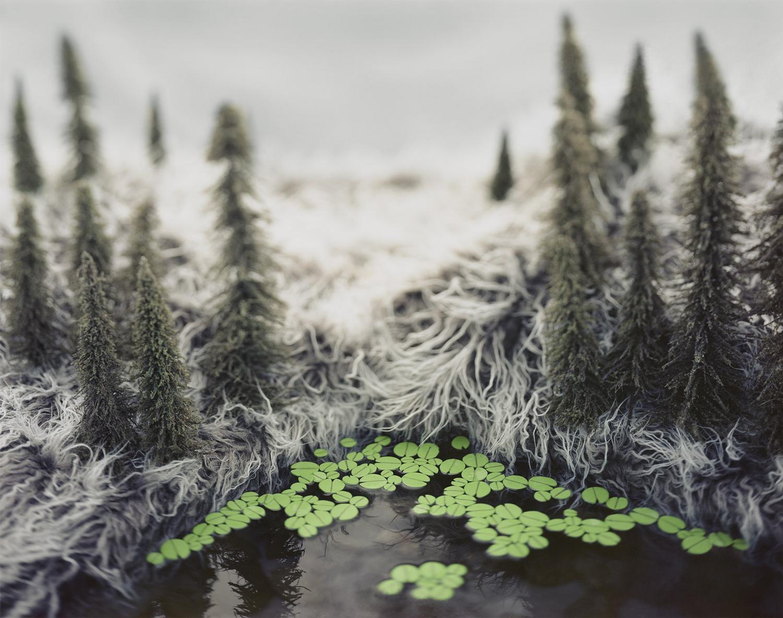 меховые пейзажи