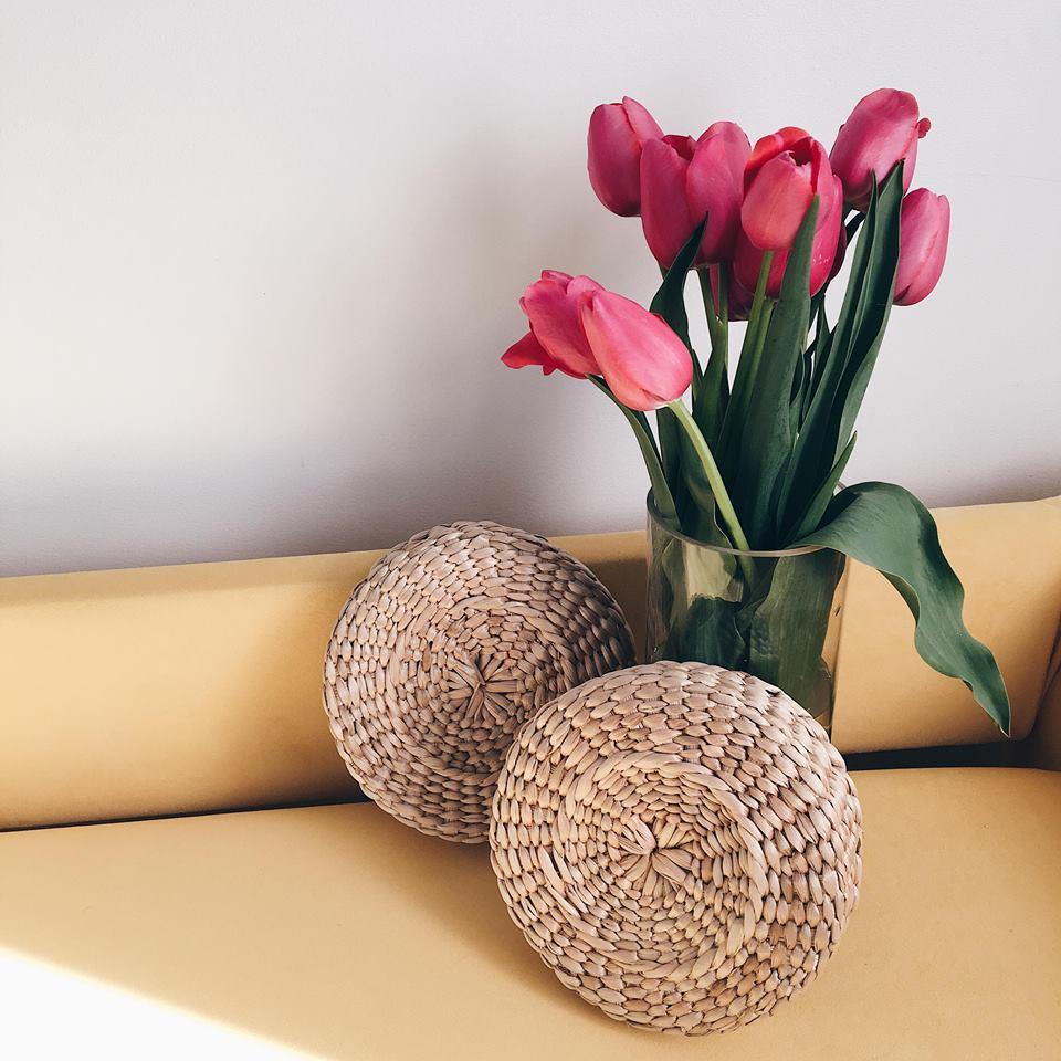 Plahta Flowers