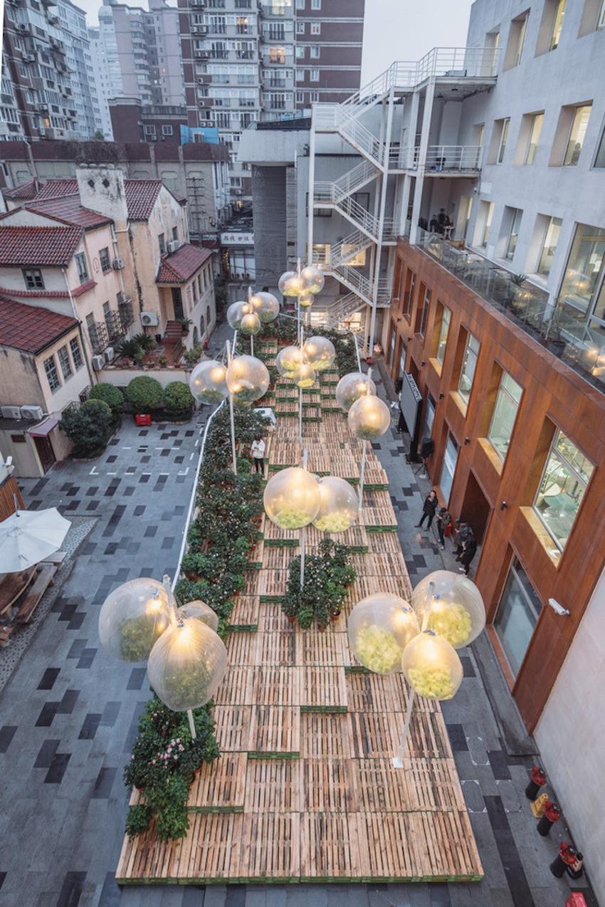 Urban Bloom Project
