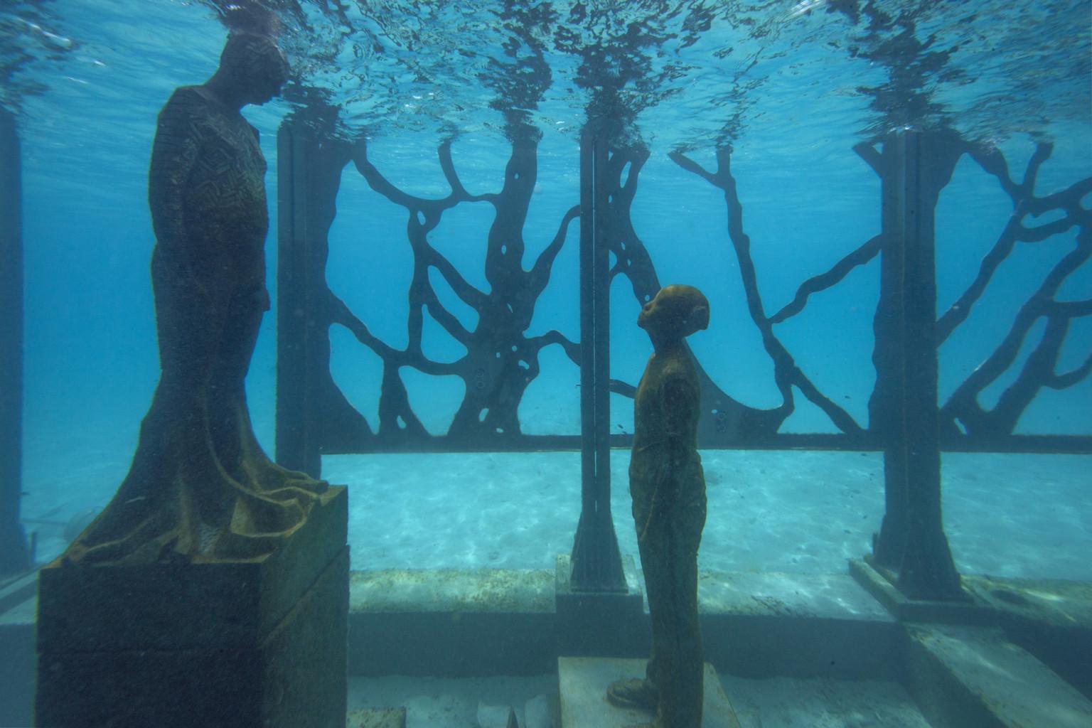 coralarium-2-768x512@2x
