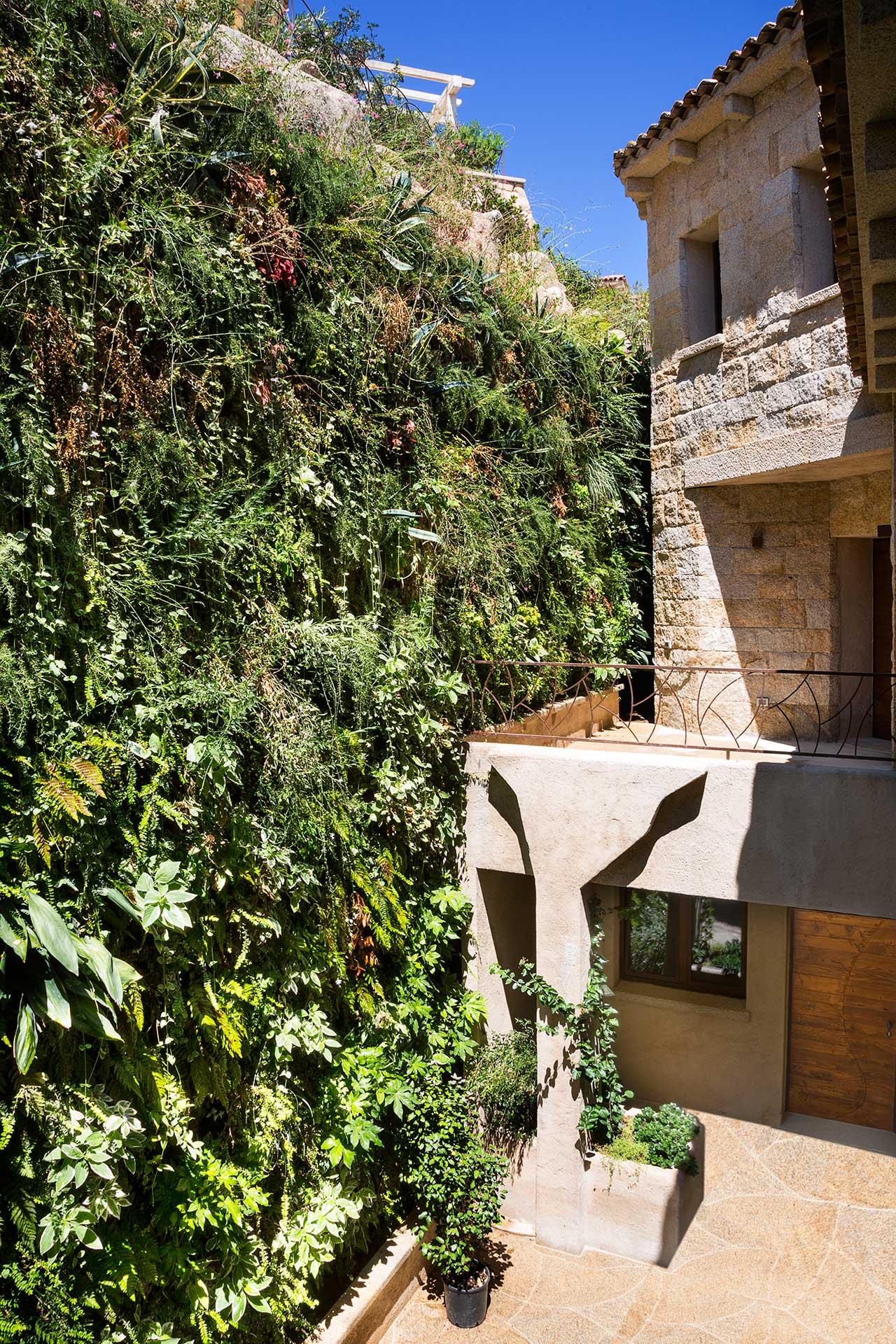 дизайн и растения