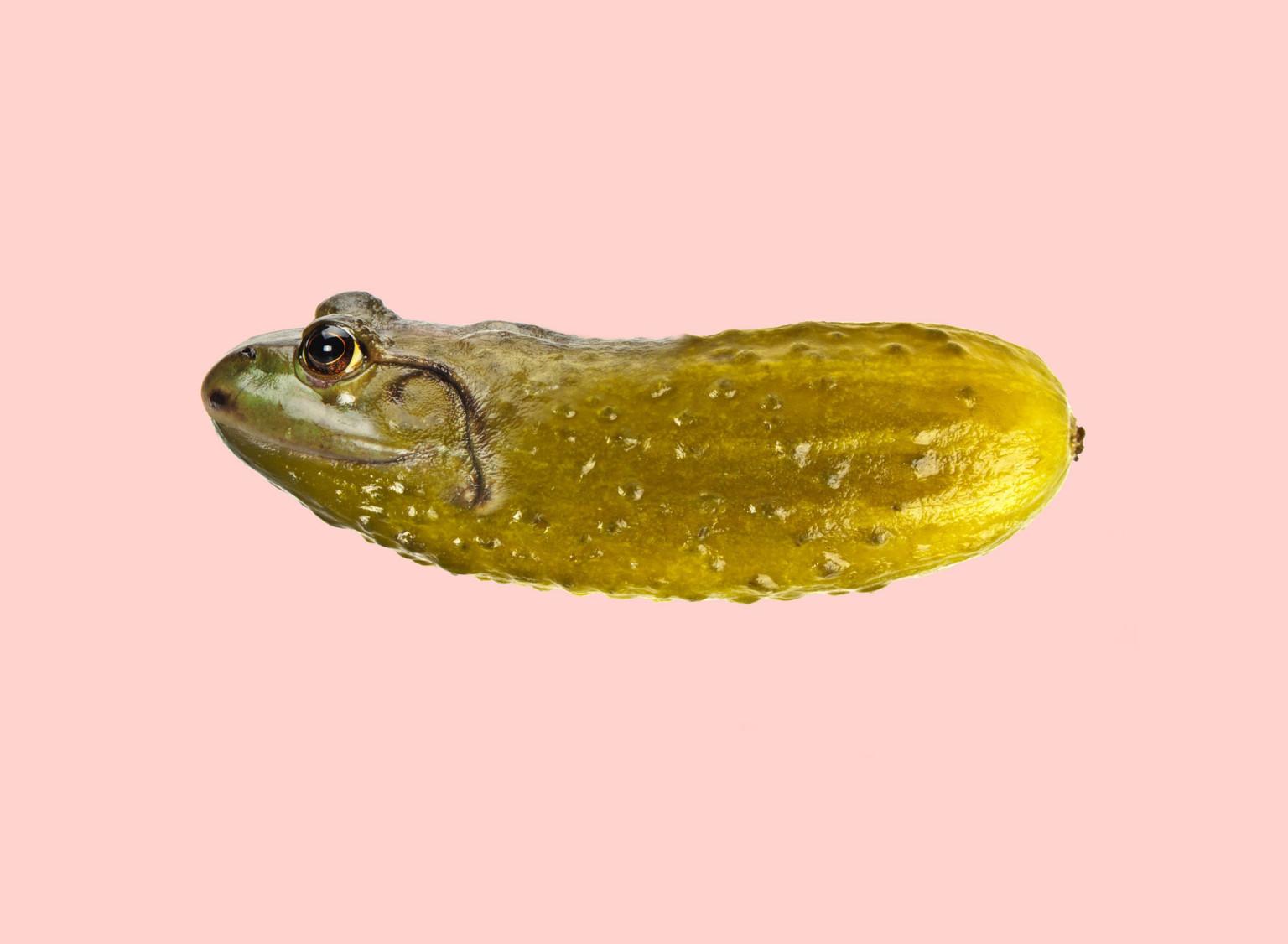 cucumber-frog-768x563@2x