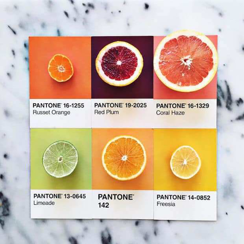 lucy-litmans-pantone-food-card-1