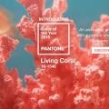 Pantone живой коралл