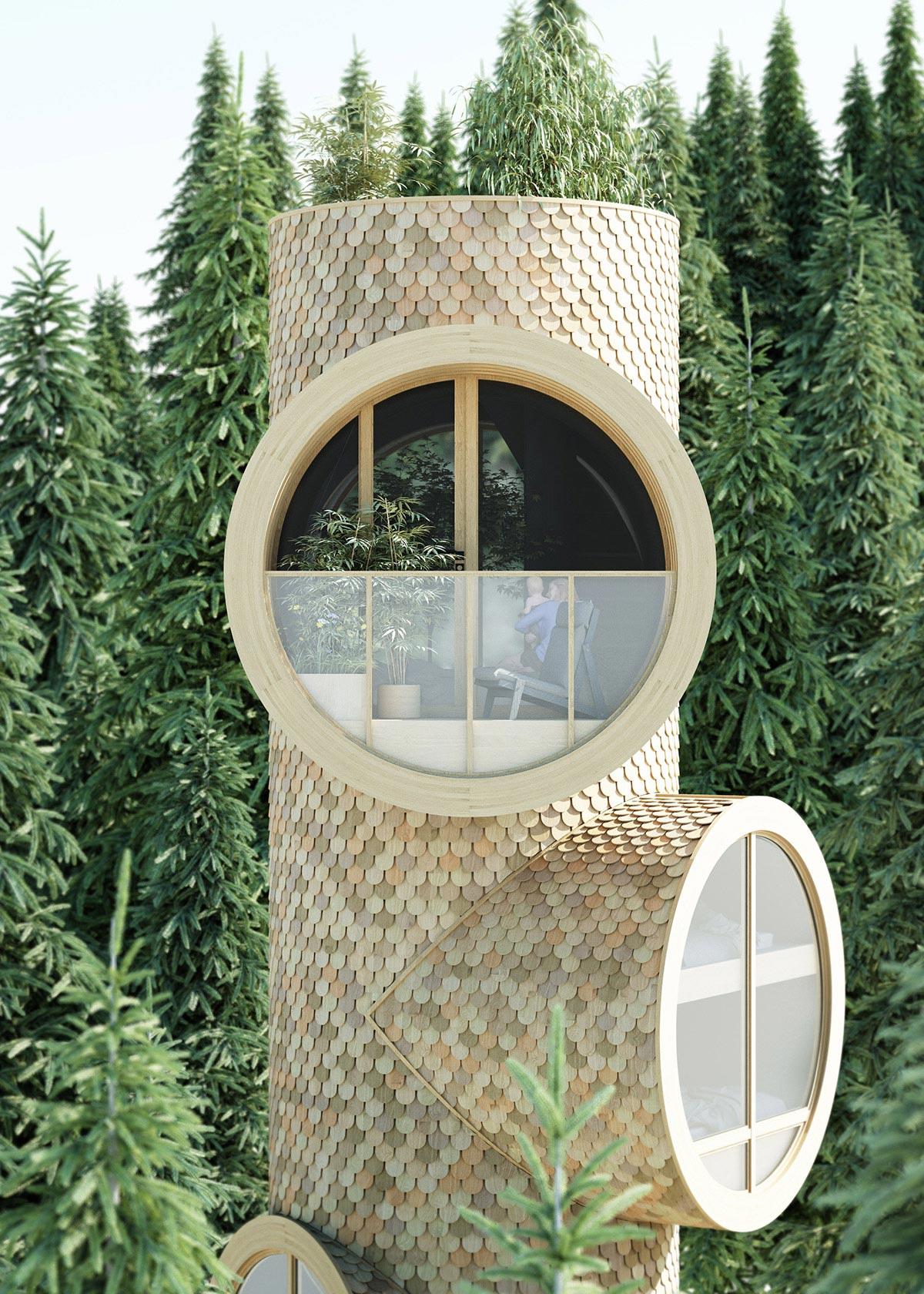 Precht-Bert-Treehouse-01