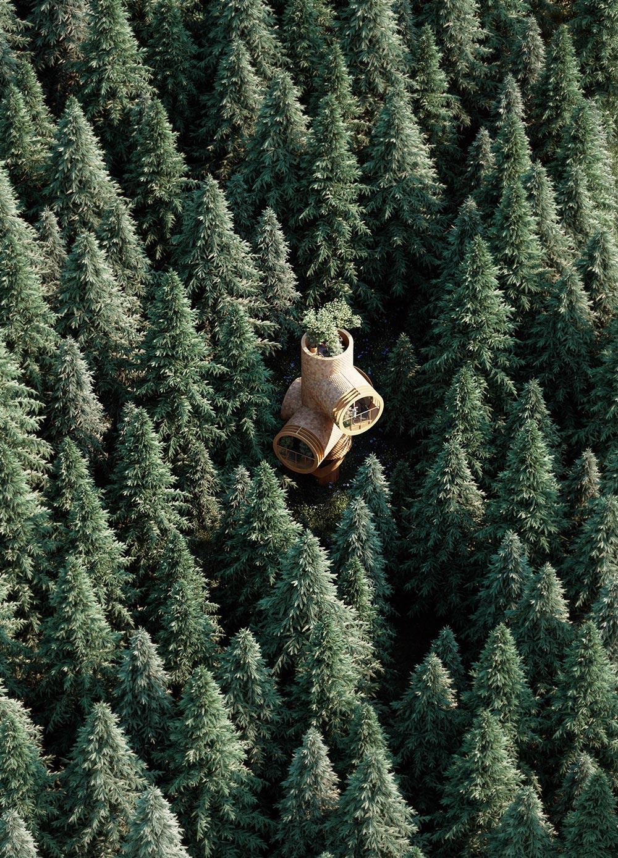 Precht-Bert-Treehouse-02