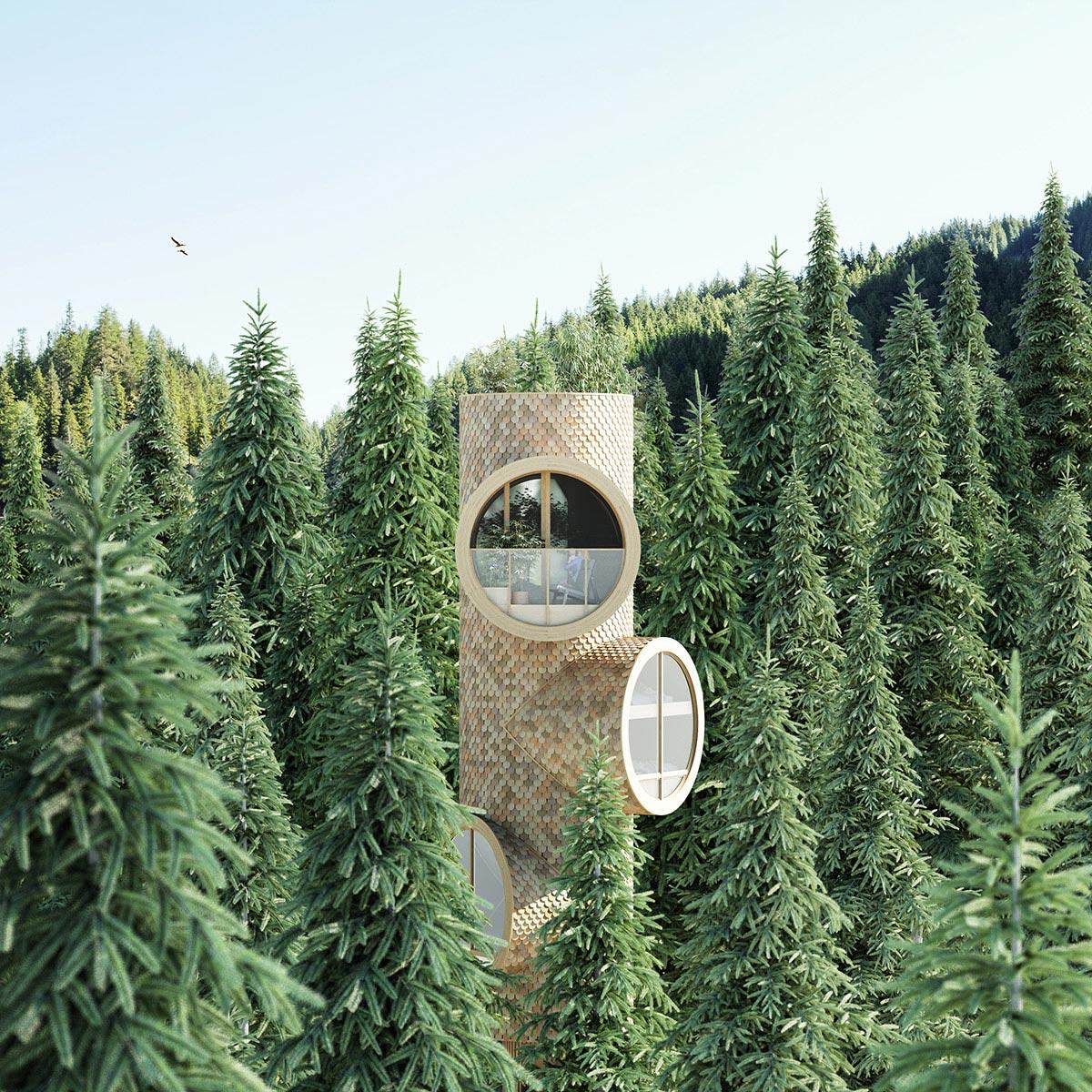 Precht-Bert-Treehouse-03