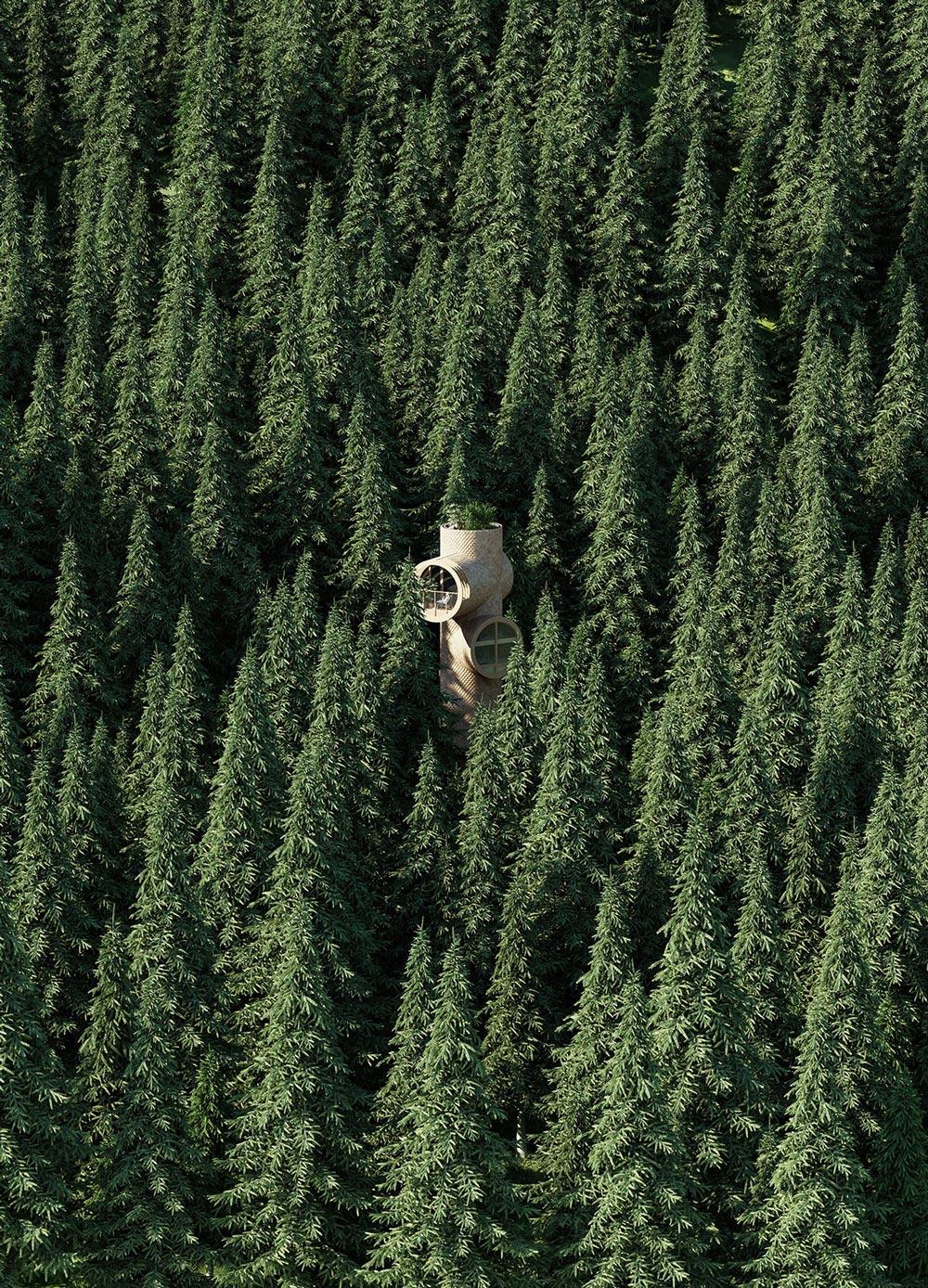Precht-Bert-Treehouse-08