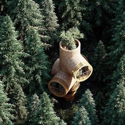 Precht-Bert-Treehouse-фб