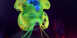 Björk создала маску-медузу для Instagram