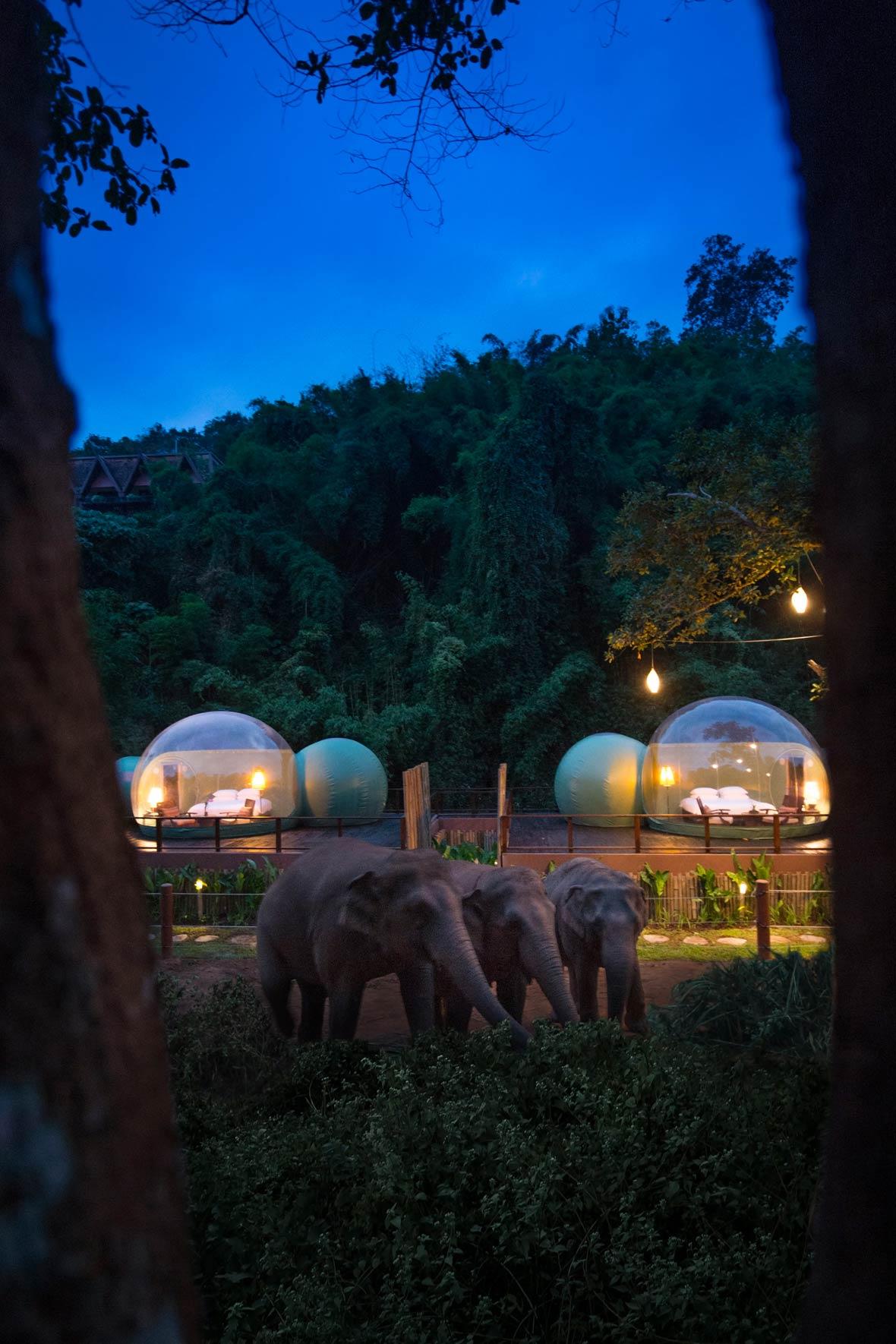 Anantara-Elephant-Camp-2