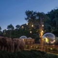 Jungle-Bubbles-hotel-thailand-1-1536x1024
