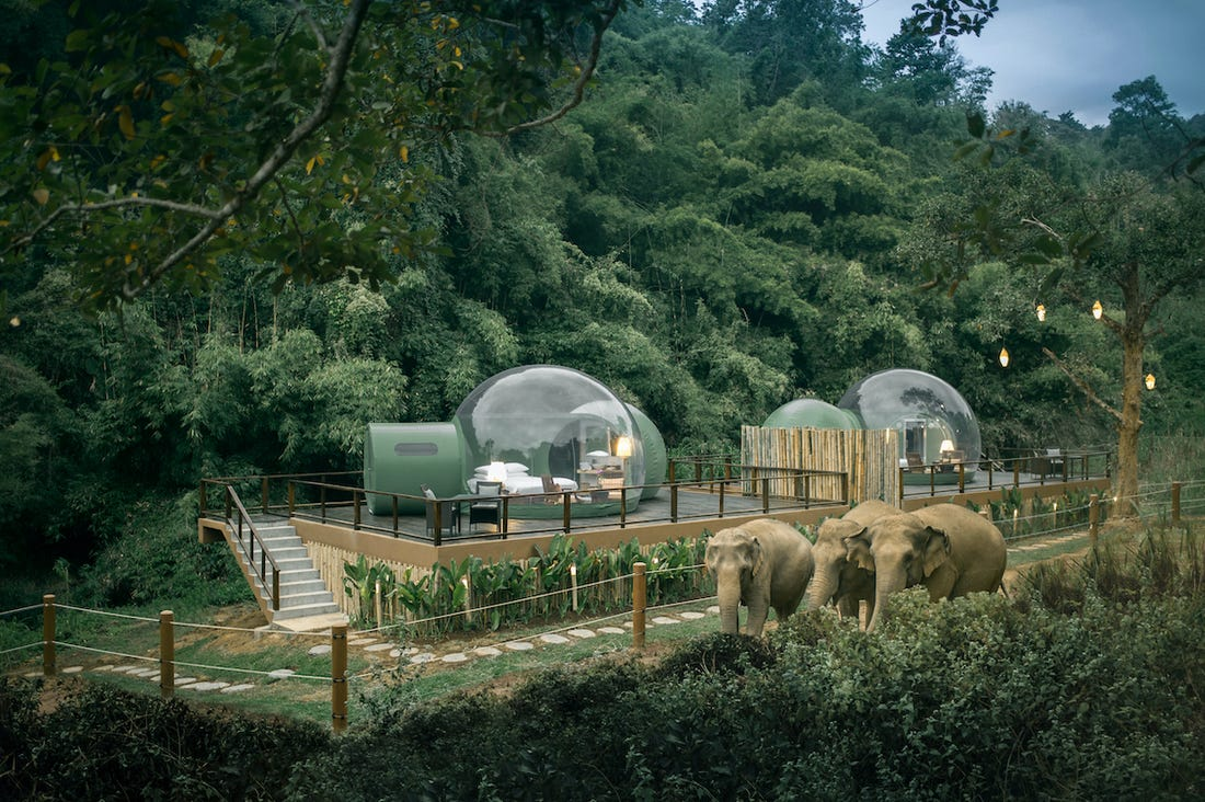 Jungle-Bubbles-hotel-thailand-2