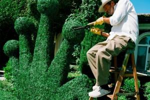 Садоводство и streetwear: коллаборация Birkenstock и Stüssy