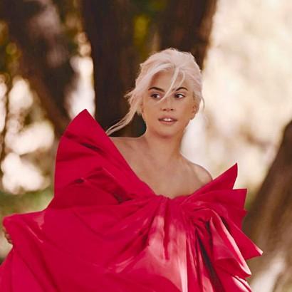 Gaga. Voce Viva.