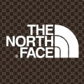 Gucci The North Face