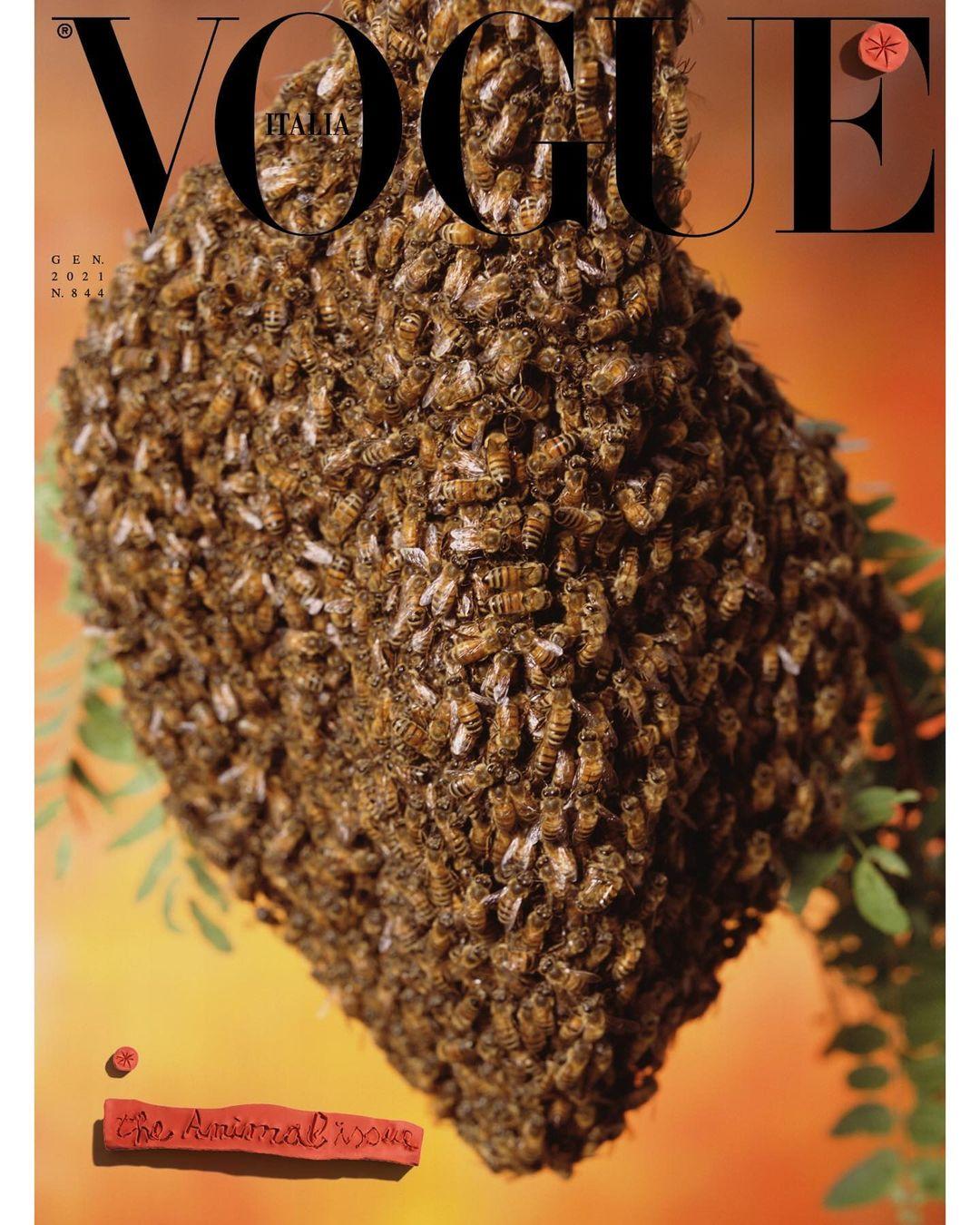 Vogue Italia 4
