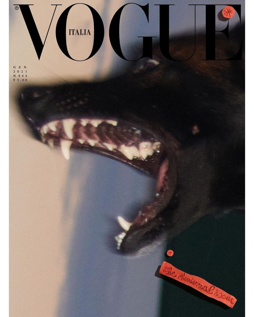 Vogue Italia 5
