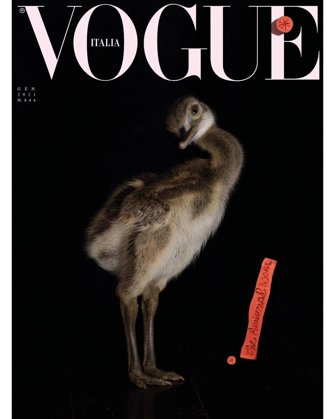 Vogue Italia 6