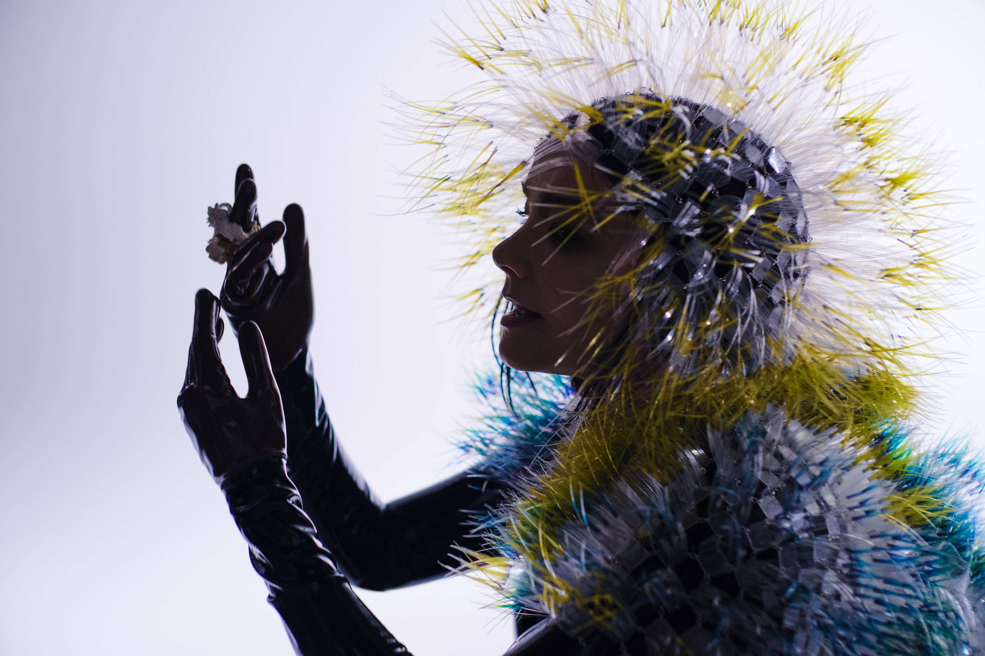 Björk 3