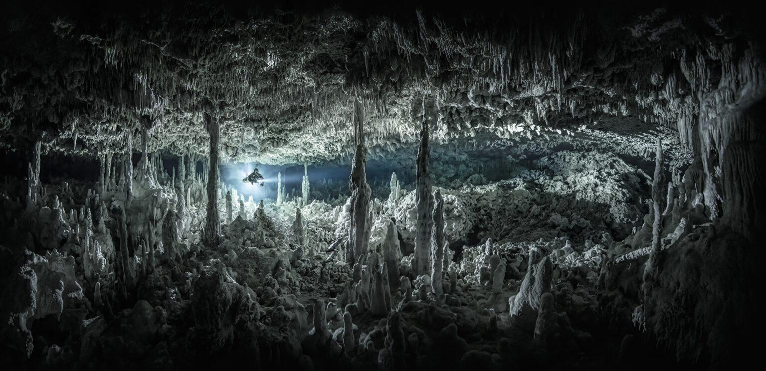 подводные фото 10
