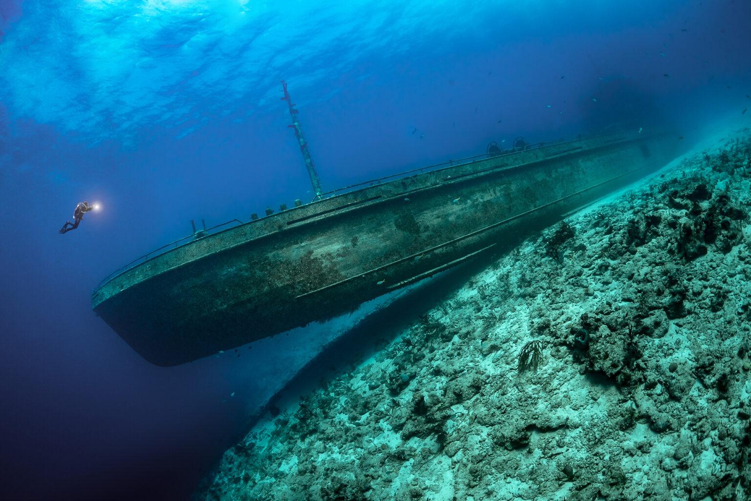 подводные фото 7